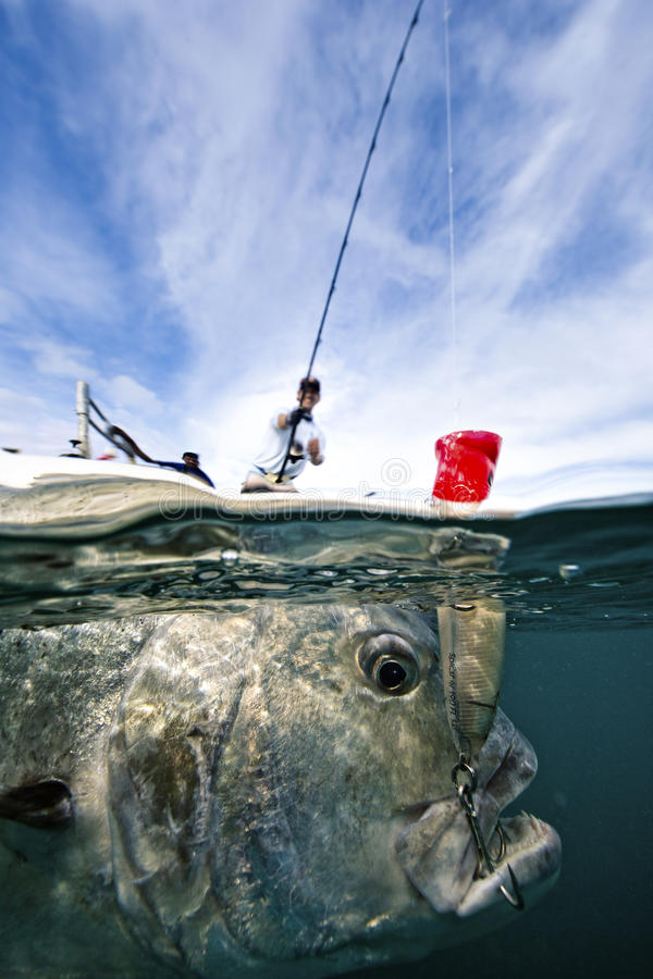 Fishing For Giant Trevally - Popping royalty free stock image