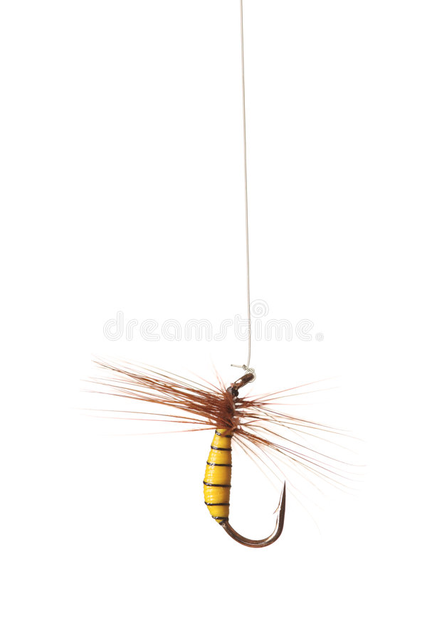 Download Fishing hook stock photo. Image of isolated, fishhook - 5825818