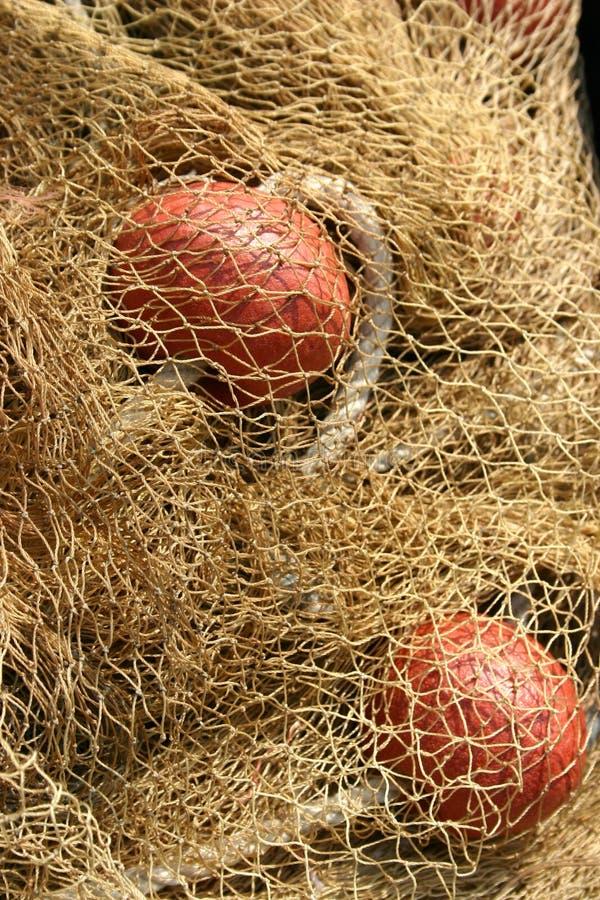 Download Fishing net stock photo. Image of blue, fishnet, nautical - 2134804