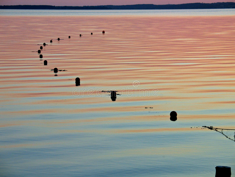 Fishing net floats on water. Calm sea with big fishing net ready for the catch royalty free stock photo