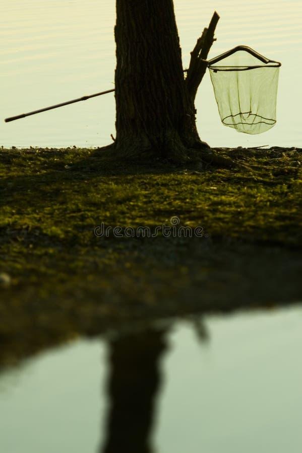 Fishing Net On Tree stock image