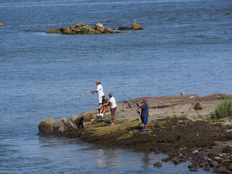 Fishing at Pelham Bay Park , Bronx NY. Pelham Bay Park is a favorite amongst NYC residents for fishing . Large Bluefish and Strippers can be caught and are royalty free stock photos