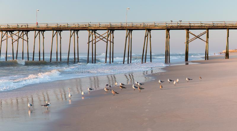Fishing pier and sea gulls stock photography