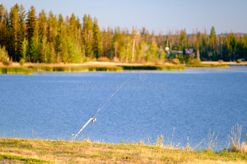 Fishing pole. By the lakeshore royalty free stock photography