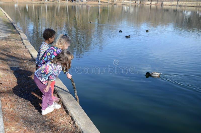 Download Fishing pond stock photo. Image of ripple, girls, fishing - 23408156
