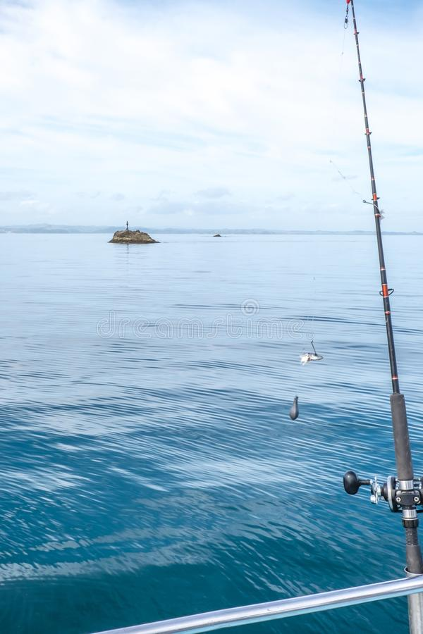 Fishing rod with bait and sinker with navigation buoy in background in Far North District, Northland, New Zealand, NZ. Fishing rod with bait, hook and sinker stock photos