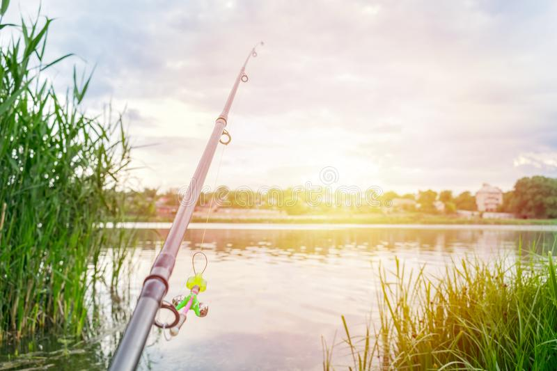 Fishing rod feeder and bag on the river bank with green reeds ea stock photography