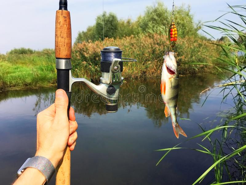 Fishing rod and a fish stock images