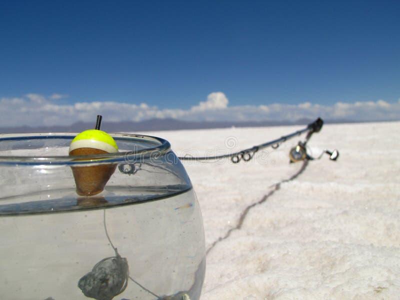 Fishing in salt desert stock images