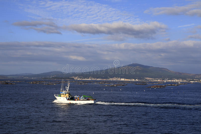 Fishing ship with wake. White fishing ship with wake and seagulls in Spain stock images