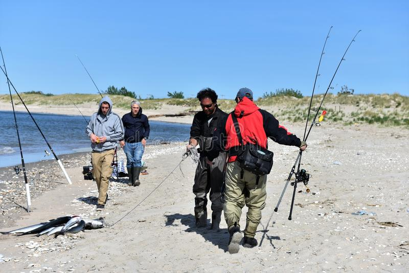 Fishing summer season in new york city area. For anglers of New York city , which located right nearby of Atlantic ocean ,saltwater fishing one of the best time stock photography