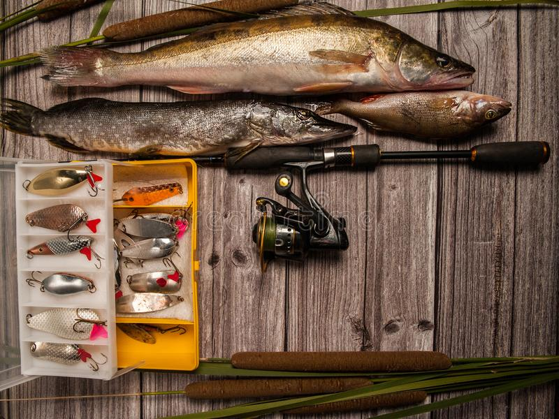 Pike, perch, zander, spinning, a set of fishing lures in a box, reel with fishing line on a wooden background. royalty free stock photos