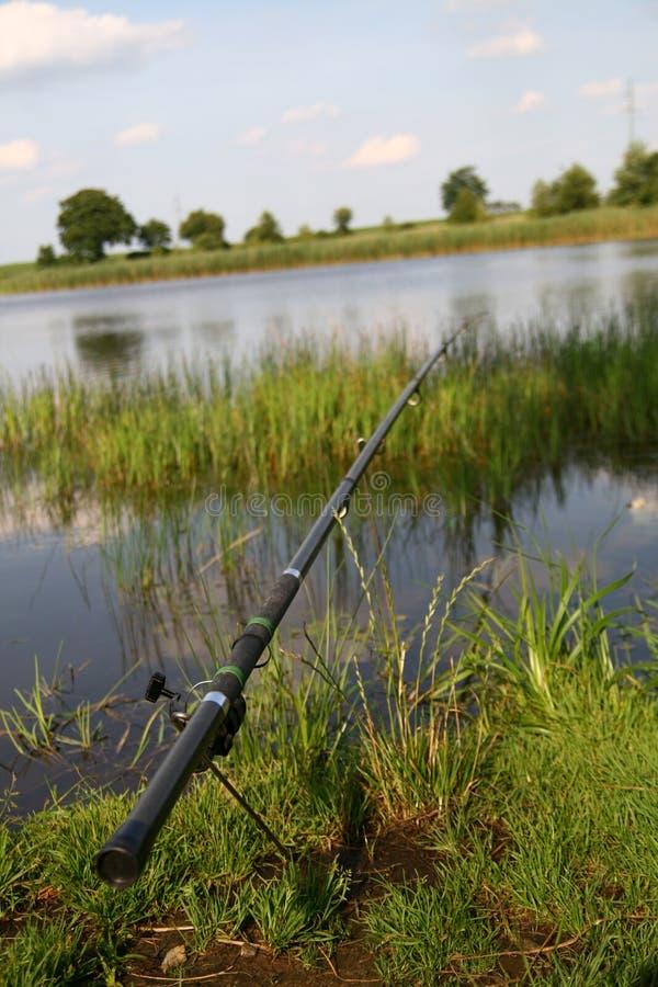 Fishing time... royalty free stock image