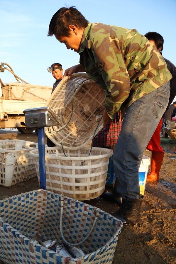 Fishing trader royalty free stock photo