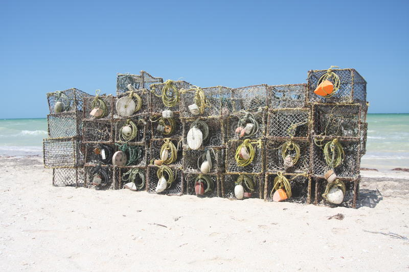Download Fishing Traps stock photo. Image of lobster, tropical - 9726738
