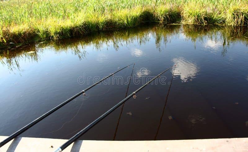 Download Fishing stock image. Image of coastline, lake, competition - 31026447