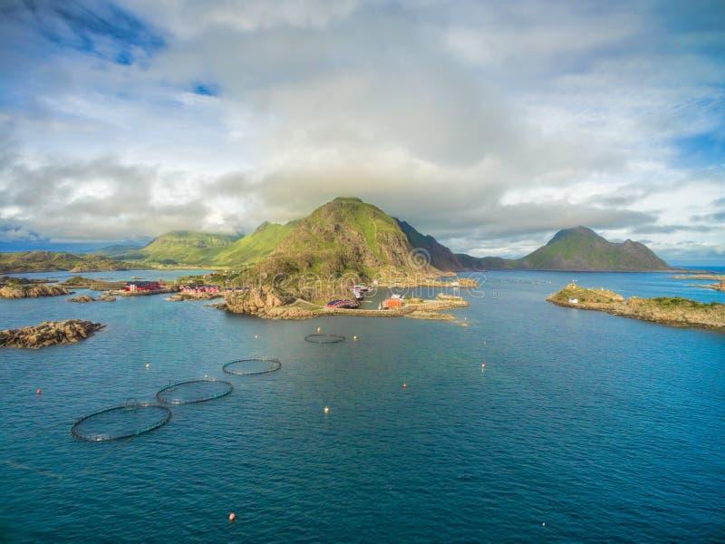 Fishing village on Lofoten stock image