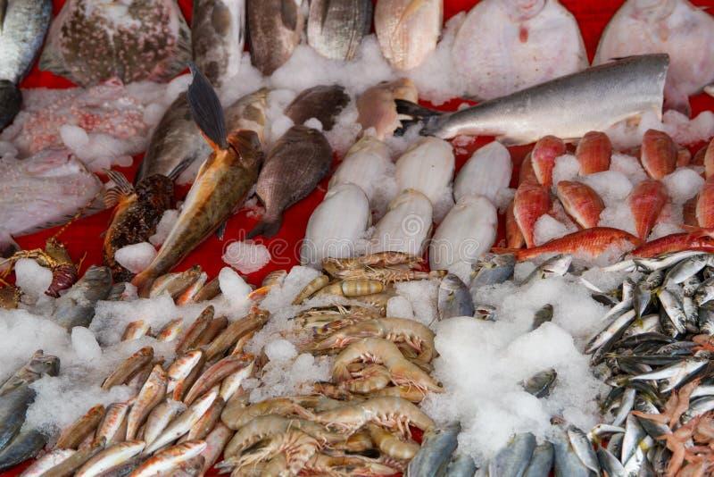 Fishmarket stock foto's