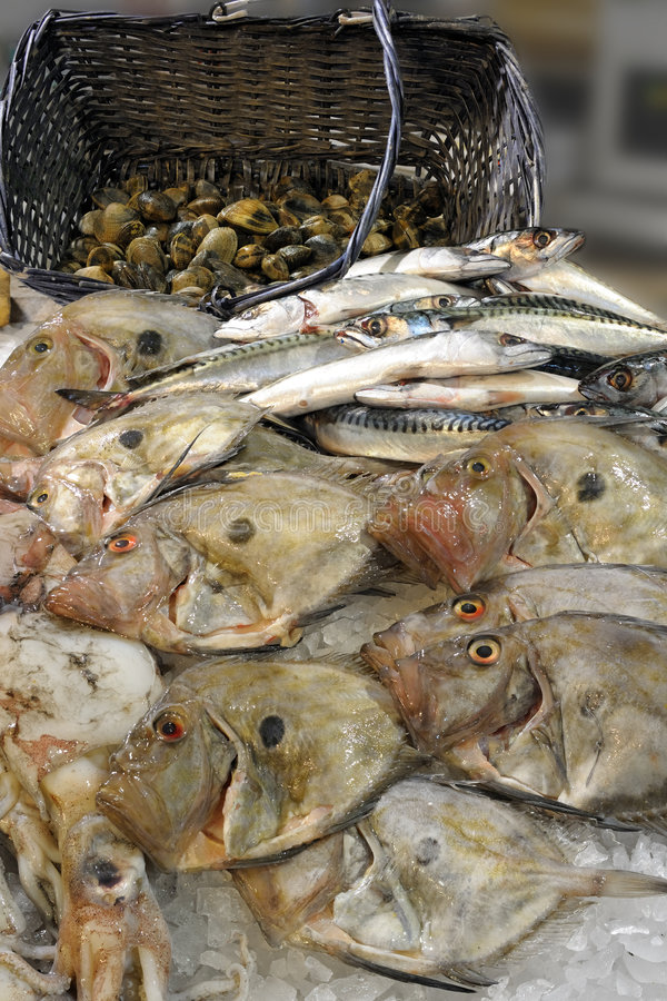 fishmonger john dory дисплея стоковое фото