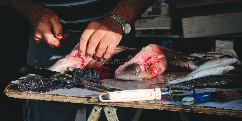 Fishmonger odskórzania dogfish przy Śródziemnomorskim rybim rynkiem zdjęcia royalty free