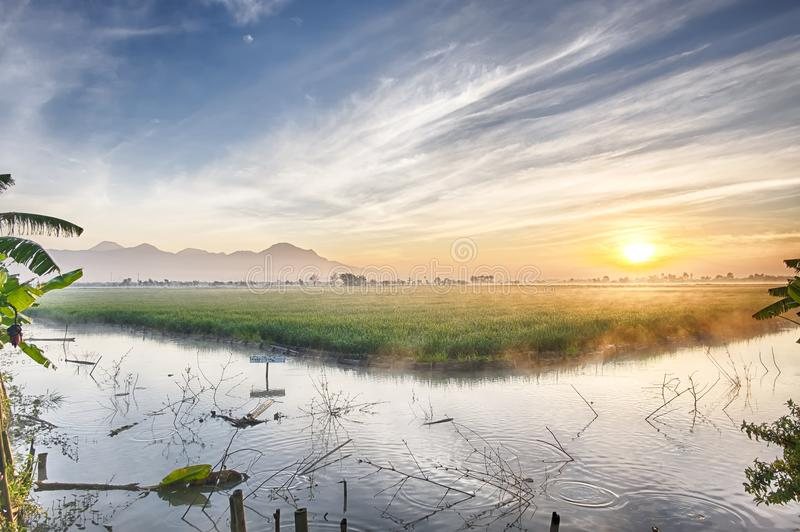 Fishpond followed by very vast, broad, extensive, spacious rice field. Streched into the horizon. Behind it is a line of hills and mountains that also stock photo