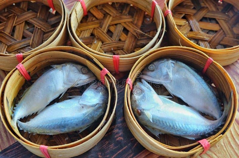 Fishs stock foto's