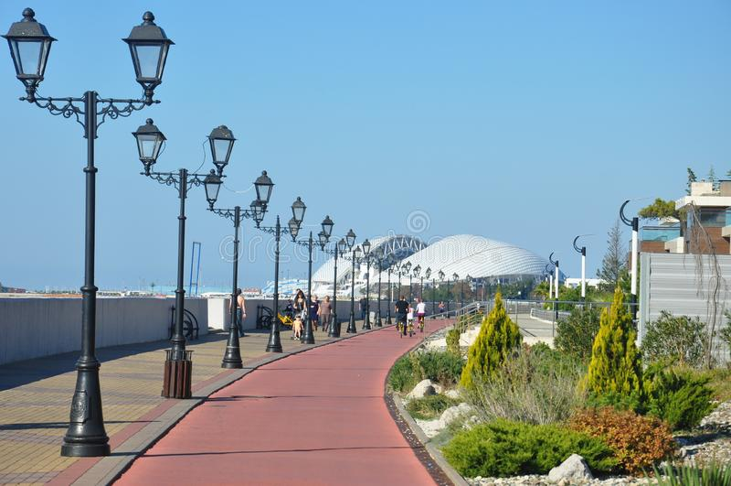 Fisht Olimpijski stadium zdjęcie royalty free