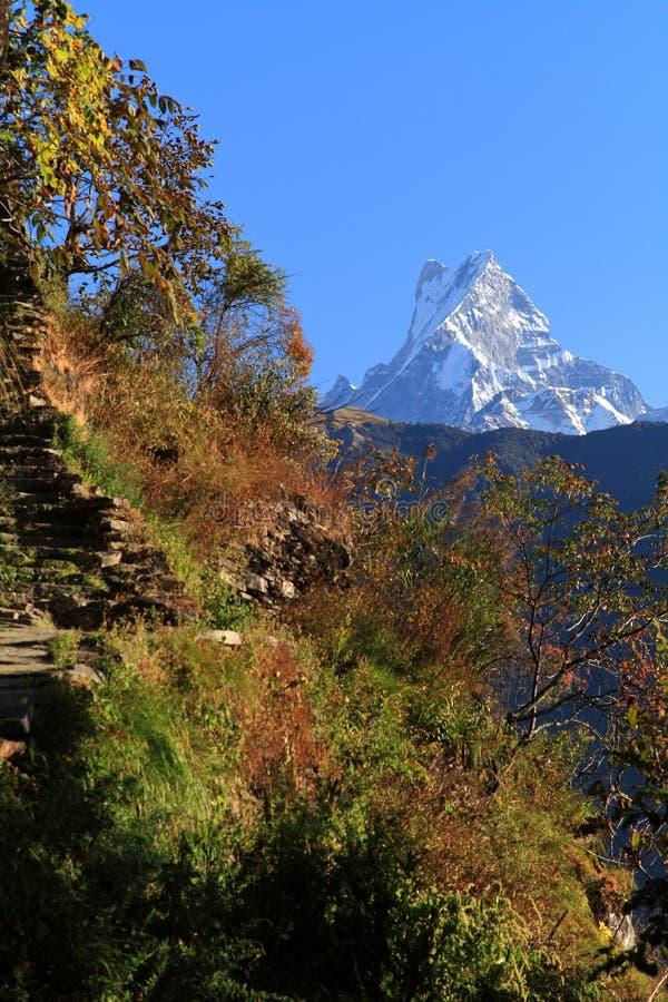 Fishtail e montagne dell'Himalaya fotografia stock libera da diritti