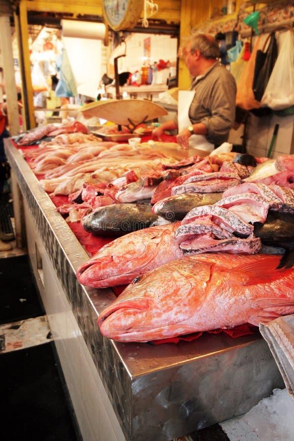 Fishy foto de stock