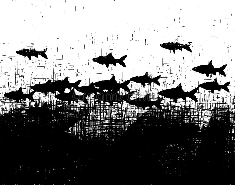 Fishy Grunge Stock Image