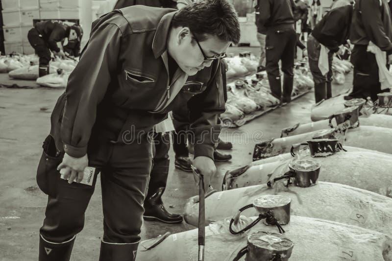 Fisk för kontroll för tonfiskauktionköpare ny på den Tsukiji marknaden i Tokyo arkivfoto