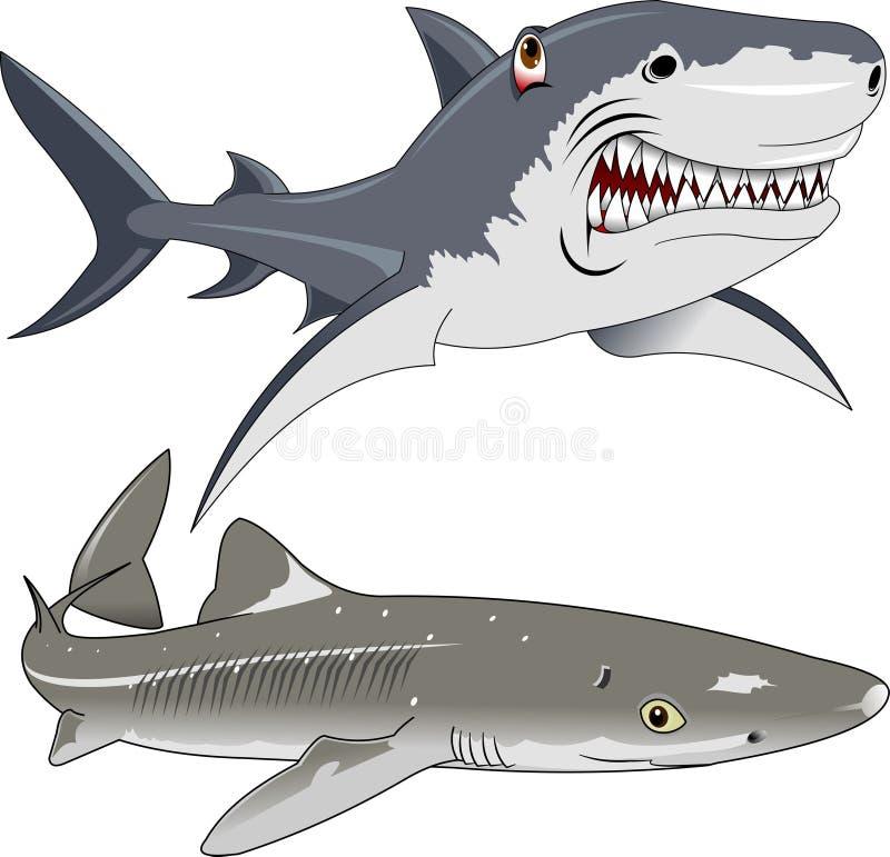 fisk fyra vektor illustrationer