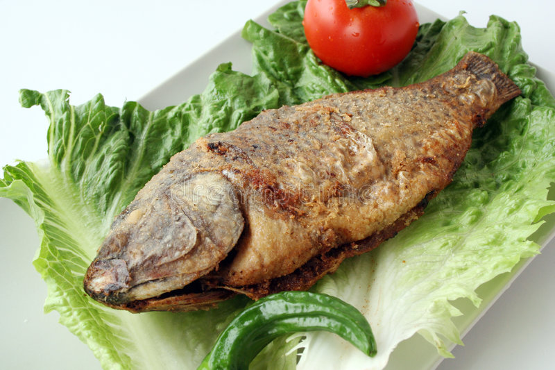 fisk stekt grönsallat arkivfoto