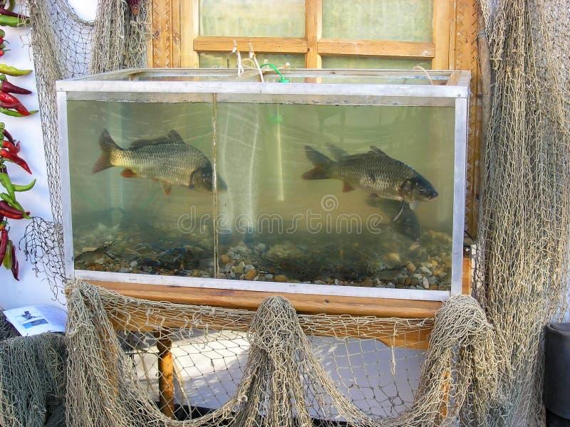 Fiska akvariet och fisknät som används som bondaktiga husgarneringar för ` som s imiterar autentiskt ryskt bygdliv lantlig plats royaltyfria foton