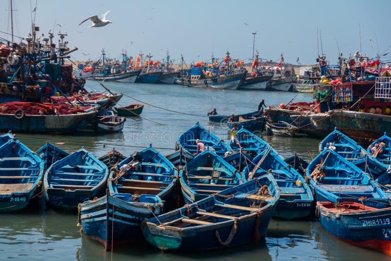 Fiska blåa fartyg i den Essaouira hamnen med fishmens arkivbilder