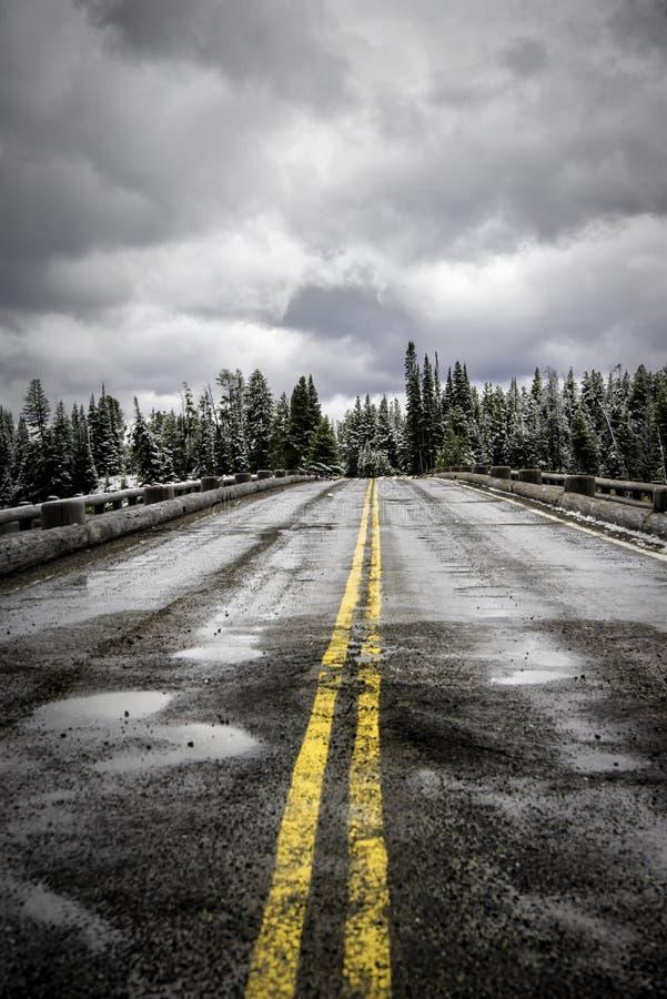 Fiska bron i vinter royaltyfria foton