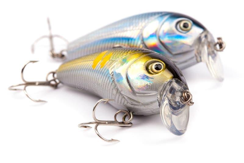 Fiska drag royaltyfri foto