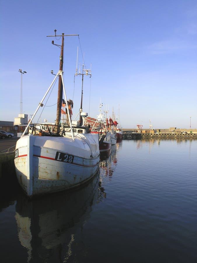 fiska för fartyg arkivbild