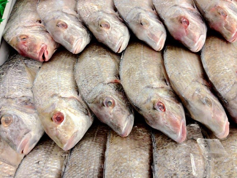 fiska försäljningen arkivbild