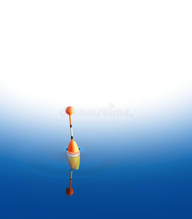 Fiska flötet i vattnet fotografering för bildbyråer