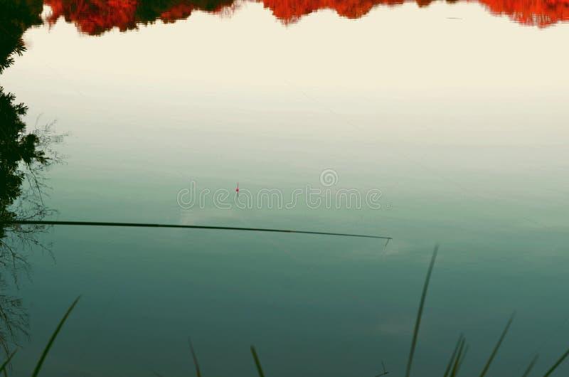 Fiska i den tysta floden royaltyfri foto