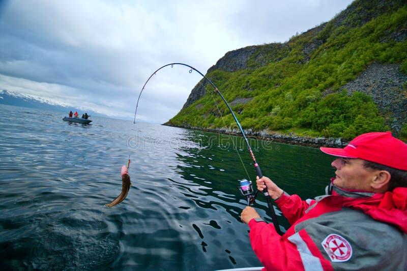 Fiska i fjorden arkivbild