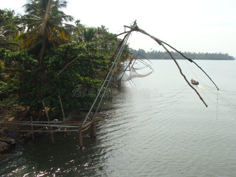 Fiska i floderna av kerala arkivfoton