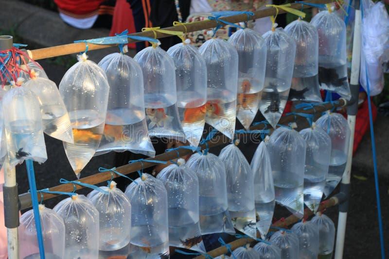 Fiska i genomskinlig försäljning för plastpåse av gatuförsäljaren i Indonesien Asien royaltyfri foto