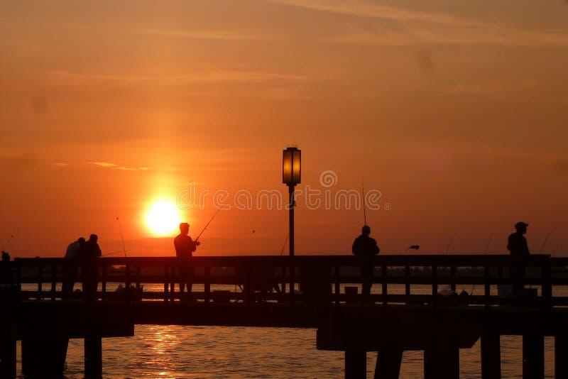 Fiska i soluppgången arkivfoton