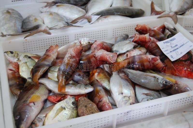 fiska marknaden fotografering för bildbyråer