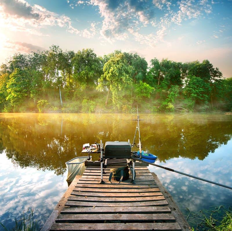 Fiska på dammet fotografering för bildbyråer
