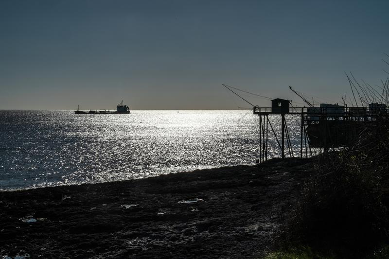 Fiska p? den atlantiska kusten av Frankrike royaltyfria foton