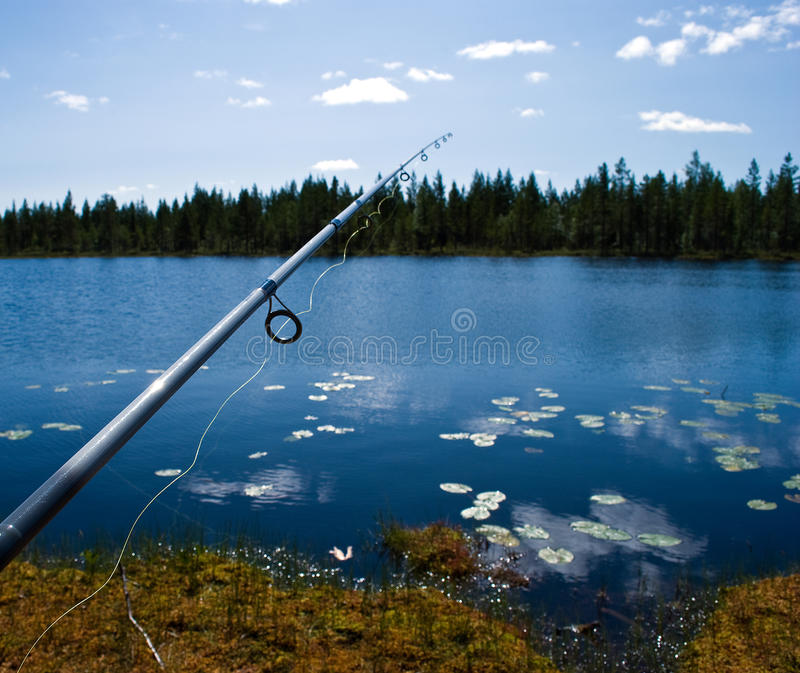 fiska scandinavian royaltyfria foton