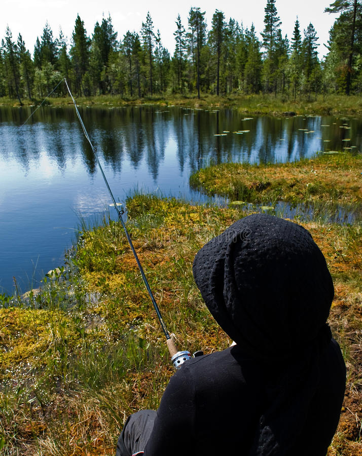 fiska scandinavian fotografering för bildbyråer